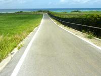 伊江島ののどかな伊江島の道 - 海まででれない道が多いが景色は良い