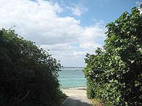 伊江島の調整池先のビーチ - 調整池を越えるとそのまま海へ