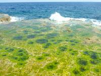 伊江島のリリーフィールド遊歩道 - ポットホールを望めます