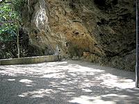 浜比嘉島のシルミチュー