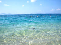 伊計島の大泊ビーチ - 海はちょっと濁り気味