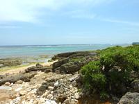 ホテル近くの海/ビーチ