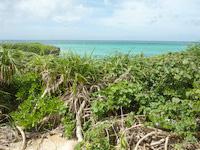 池間島の池間ブロック/フナクスビーチの写真