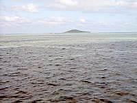 池間島の池間沖の海の中 - 近くにもずく畑もあるものの・・・