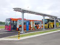 下地島のみやこ下地島空港へのアクセス/バス/レンタカー - バス乗り場へ一発で行くことができたらすごいw