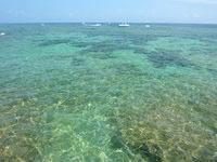 伊良部島の白鳥崎の海 - 透明度は抜群ですが魚や珊瑚は少なめ