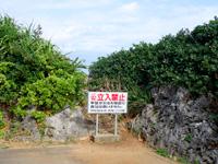 伊良部島のフナウサギバナタ展望台 - 崖へは最近立入禁止に・・・