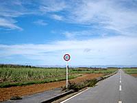 下地島ののどかな下地の道