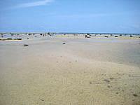 伊良部島の佐和田の浜 展望台の写真