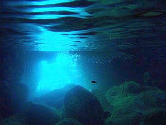 青の洞窟の海の中