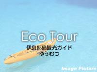 宮古列島 伊良部島の伊良部島観光ガイドゆうむつの写真