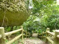 伊良部島の牧山公園/豊見氏親墓碑 - ほとんど人が通ったあとが無い