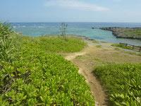 伊良部島の白鳥崎 - 梅へと向かう散策路