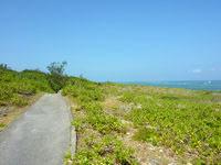 伊良部島の白鳥崎 - 散策路は広範囲にあります