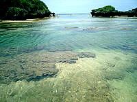 西表島の星砂の浜 - 干潮時はルートを選べば歩いて渡れます