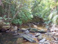西表島のゲーダの滝への道 - 最初に川の対岸に渡ります