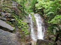 西表島のゲーダの滝1段目/滝壺の写真
