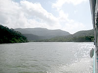 浦内川中流