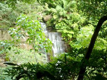 ゲーダの滝上への道