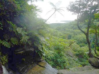 ゲーダの滝上