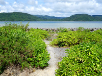 西表島の船浮ビーチ/船浮集落の海 - あぜ道を進んで行きます