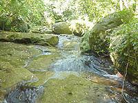 西表島のユツン川/ユチン川 - 岩の斜面もこの川の特徴
