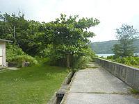 西表島の船浮岬/トゥバル山/緊急時避難場所 - 集落端、学校脇の先に入口有り