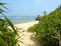 西表島のうなり崎のビーチ - ドキドキする草むら先のビーチ