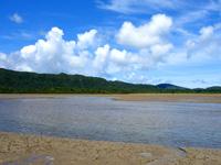 八重山列島 西表島の船浦湾の干潟の写真