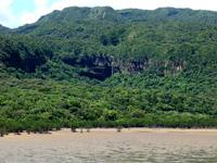 西表島の船浦湾の干潟 - ピナイサーラの滝も実は見えます