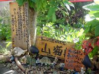 西表島の山猫軒 - いろいろこだわりがあるお店のようです