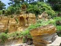 西表島の船浮 イダの浜の岩場/落ちない岩/転けない岩 - 地層もいい感じです