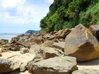 西表島の船浮 イダの浜の岩場/落ちない岩/転けない岩 - 他にも独特の岩が落ちています