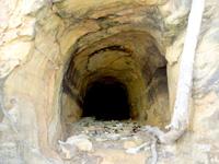 西表島の船浮 港先の岩場/洞窟 - 結構な洞窟だけど多分人工的なもの