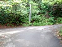 西表島の祖納ふるさとの森 - 丁字路を左に行く公園、右へ行くと山道