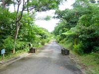 西表島の祖納ふるさとの森 - 公園までの最後の道