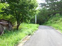 西表島の祖納ふるさとの森 - 丁字路を右に進むと猛烈な坂道の先に!