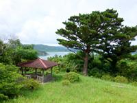 西表島の祖納ふるさとの森 - 坂道の先なので景色は開けているが・・・