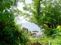 西表島のラティーダのビーチの写真