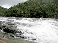 西表島のカンピレーの滝の写真