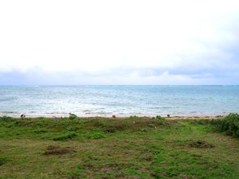 西表島のたかなビーチ