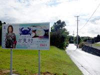 西表島の古民家カフェ 古見村 - 幹線道路にはその有名人の顔写真看板ありw