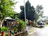 西表島の古民家カフェ 古見村 - お店自体は離島の食堂っぽいいい雰囲気