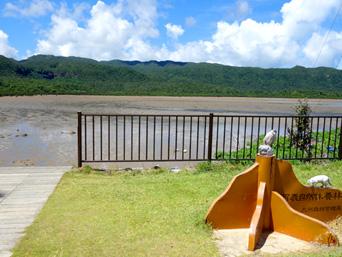 西表島のピナイサーラの滝への道「道路からはここから向かいます(階段有り)」