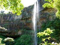 西表島のピナイサーラの滝/滝下