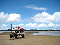 由布島(八重山列島/西表島のおすすめ観光スポット)