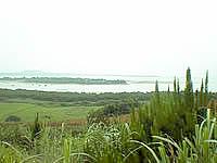 西表島の由布島 - 島は真っ平らで小さいです