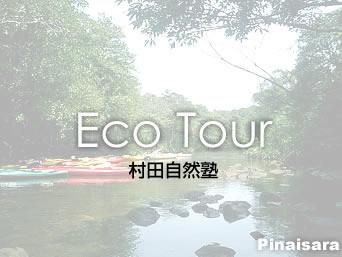 西表島の村田自然塾「様々なエコツアーメニューでいろいろ楽しめます」