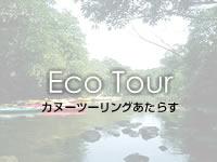 八重山列島 西表島のカヌーツーリングあたらすの写真