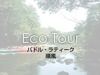 西表島のパドル・ラティーク順風(廃業)「シーカヤックがメインのツアー」